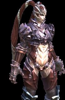 TERA Endgame Gear Guide
